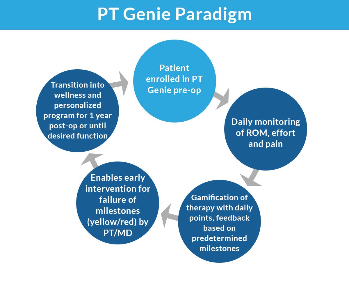 PT Genie Paradigm